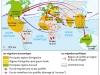 Les migrations dans le monde